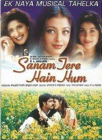 Sanam Tere Hain Hum (2000) Songs Lyrics