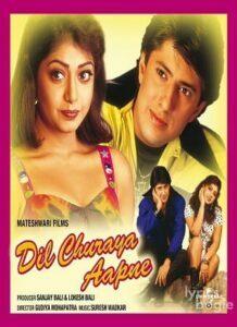Dil Churaya Aapne (2001)