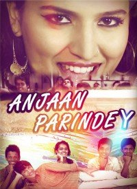 Anjaan Parindey (2015) Songs Lyrics