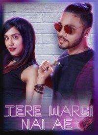 Tere Wargi Nai Ae (2017) Songs Lyrics
